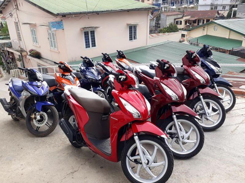 Cung cấp dịch vụ cho thuê xe máy ở Đà Lạt