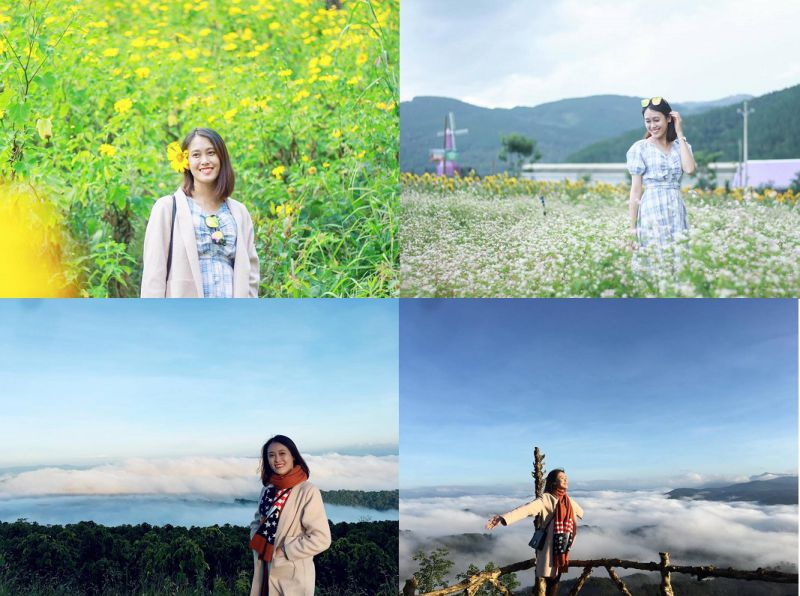 Tháng 11 thích nhất là ngắm hoa Dã Quỳ và đi săn mây