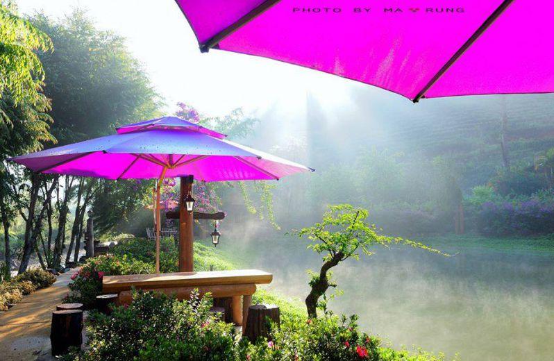 kdl ma rừng lữ quán ở Đà Lạt