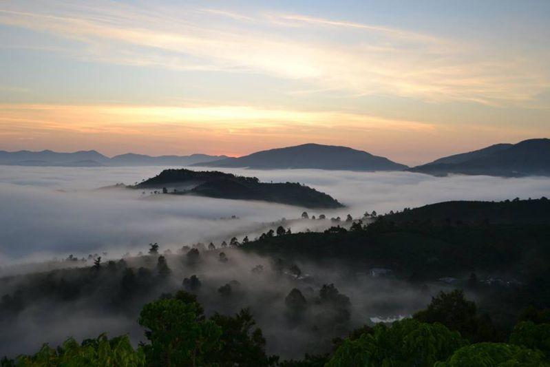 Biển mây tại linh quy pháp ấn lâm đồng