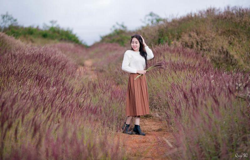 Đồi cỏ lau màu hồng ở Đà Lạt