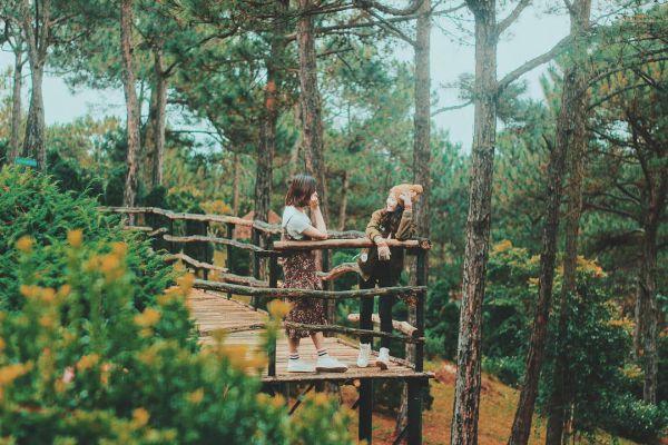 Tour langbiang thung lũng vàng 1 ngày ở Đà Lạt