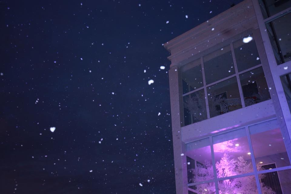 Thông tin đà lạt có tuyết rơi