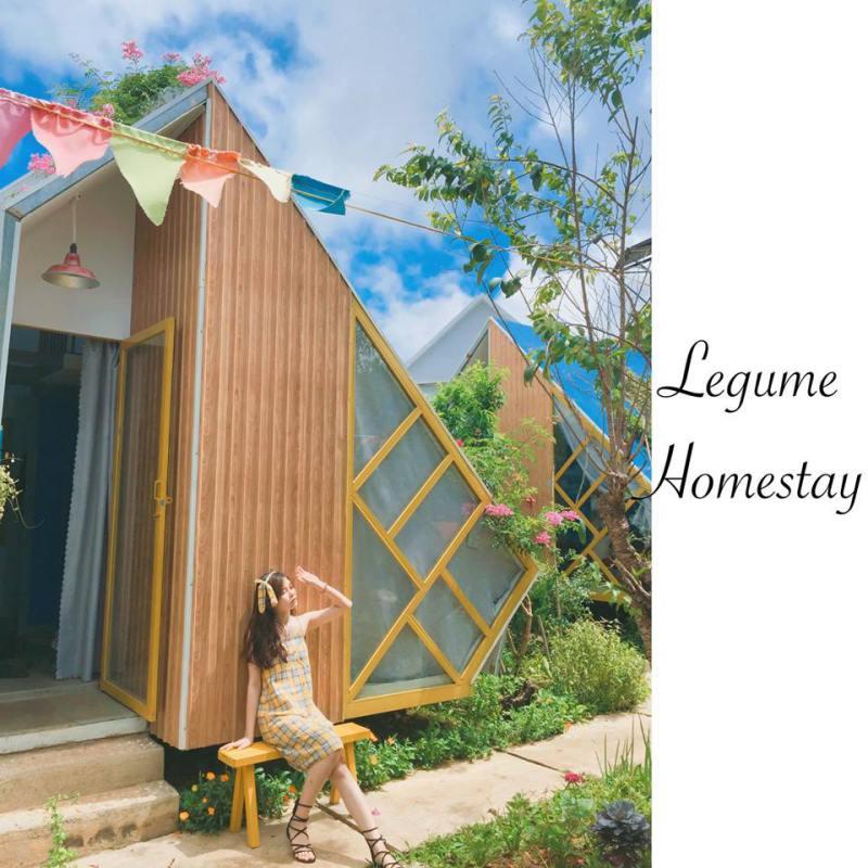 Check-in cùng Legume homestay Đà Lạt