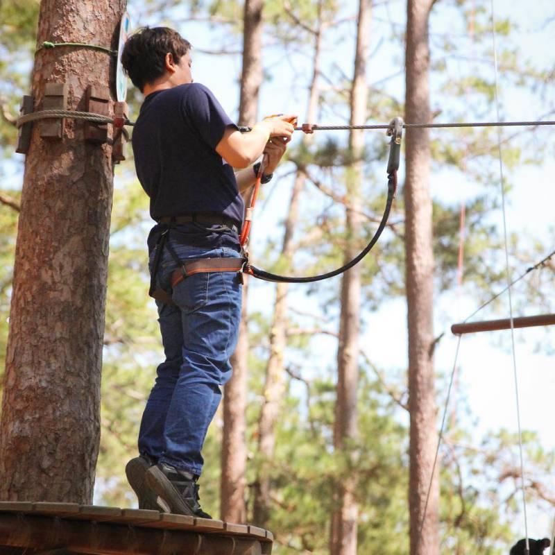 rừng thông ở khu Datanla High Rope Course