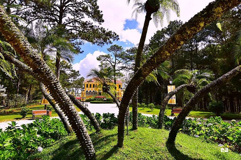 King Palace 1 in Da Lat - DalatZoodoo tour