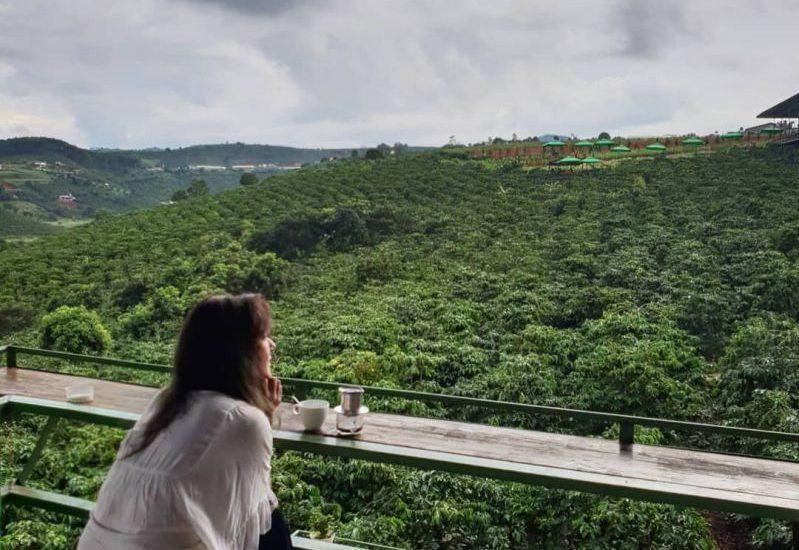 Ngắm thỏa thích không gian bao la ở Mê Linh Cafe Garden Tp. Đà lạt