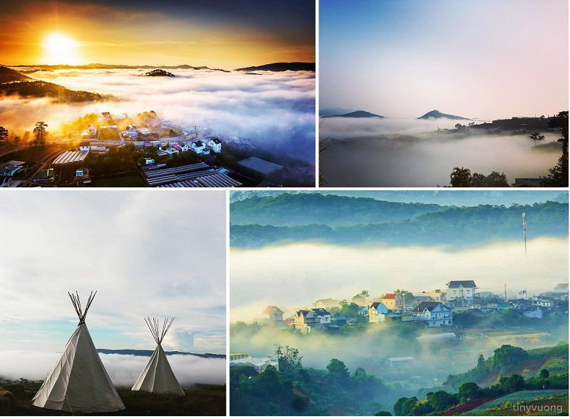 Săn mây Trại Mát Đà Lạt là một trải nghiệm đẹp