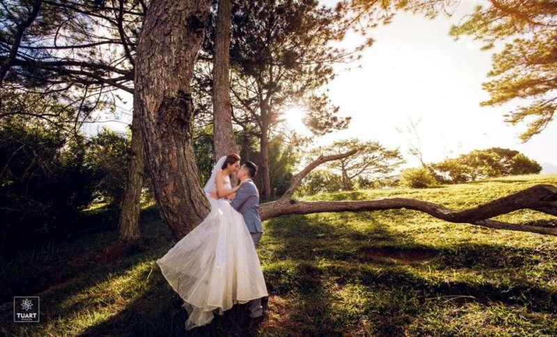 Chụp ảnh cưới Đà Lạt - tại đồi thông