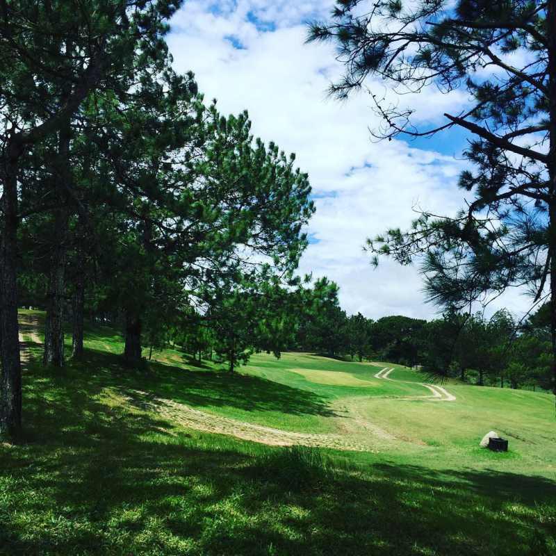 Bãi cỏ xanh mướt dài miên man theo lối đường mòn ở sân Golf đồi Cù tại Đà Lạt