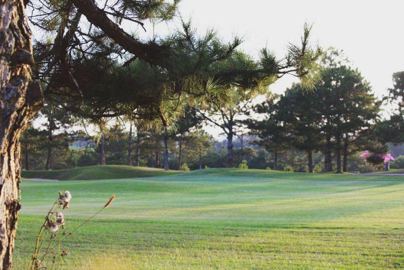 Đến sân Golf đồi Cù ở Đà Lạt để trải nghiệm cuộc sống giản dị mà sang trọng
