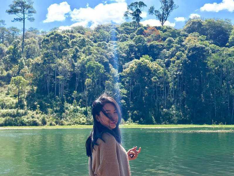 Trải nghiệm sống ảo cùng rừng lá phong ở Đà Lạt