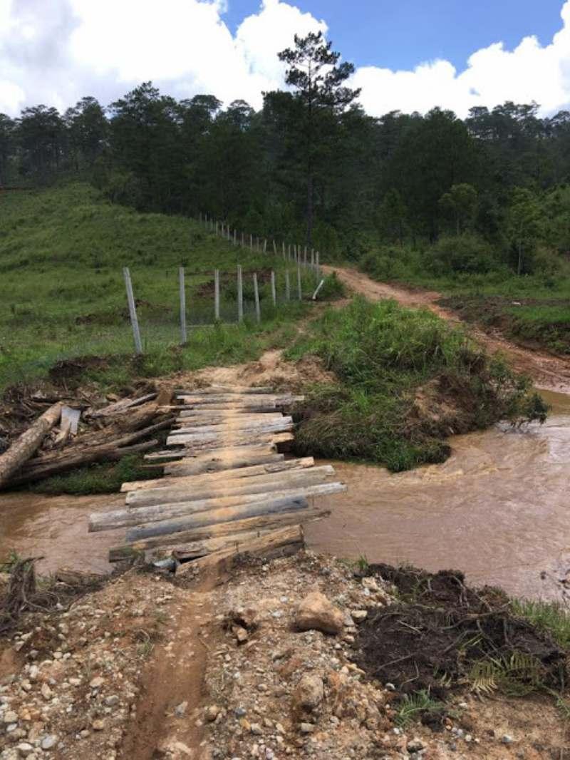 Cây cầu gỗ đơn sơ bắc qua dòng suối trên đường đi tuyệt tình cốc
