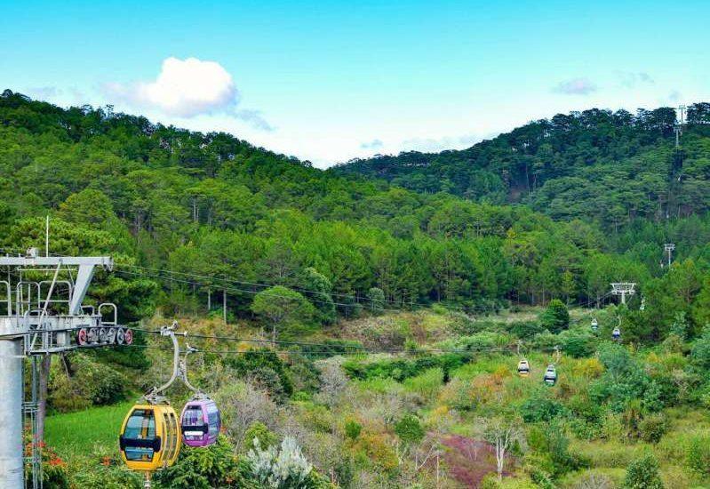 một không gian với nhiều cây xanh và hoa nhìn từ đồi Robin