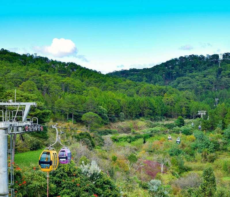 Đi cáp treo ở Đà Lạt và view ngắm nhìn rừng thông xanh
