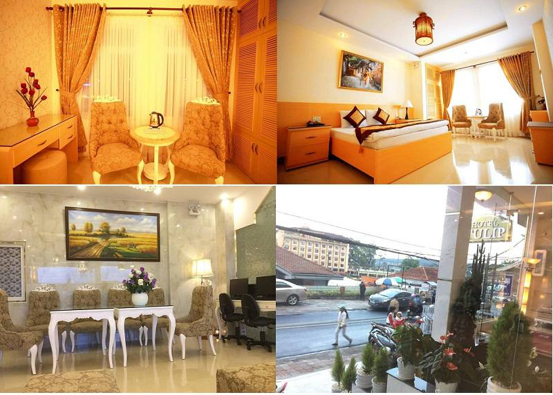 Khách sạn Tulip 2 Đà Lạt là một điểm dừng chân lý tưởng ở trung tâm thành phố Đà Lạt