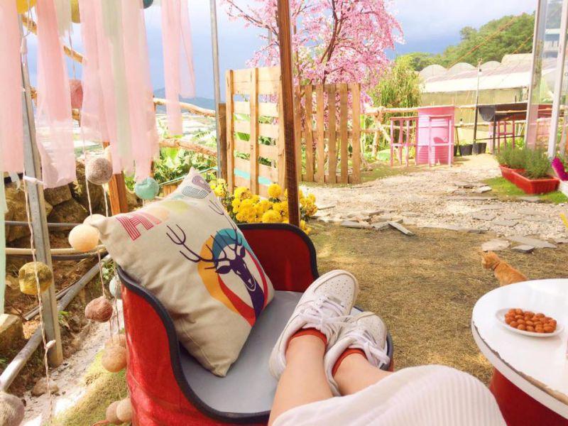 một góc hình ảnh quán cafe Sunny Farm
