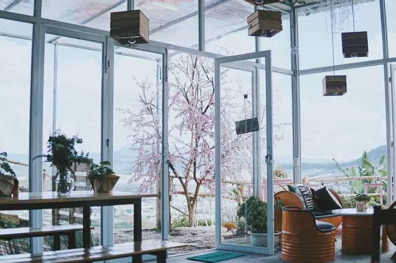 không gian quàn cafe Sunny Farm Đà Lạt vừa đẹp, vừa lạ