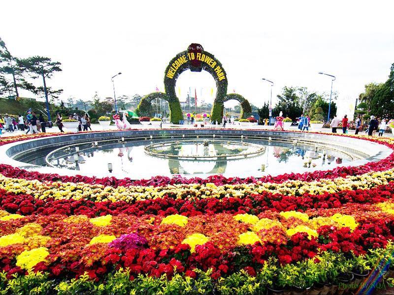 Vườn hoa thành phố Đà Lạt - một trong những nơi cung ứng hoa của Đà Lạt (ảnh sưu tầm)