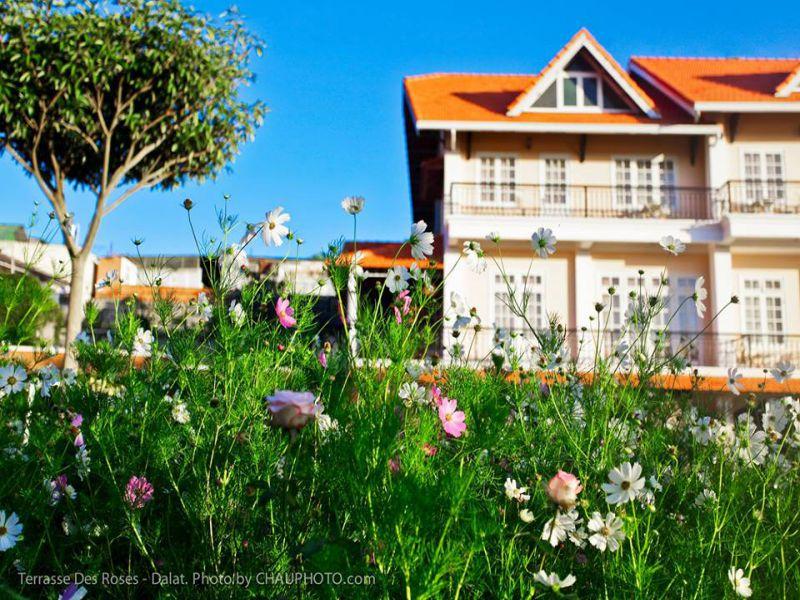 Khách sạn đà lạt 4 sao Terrasse Des Roses