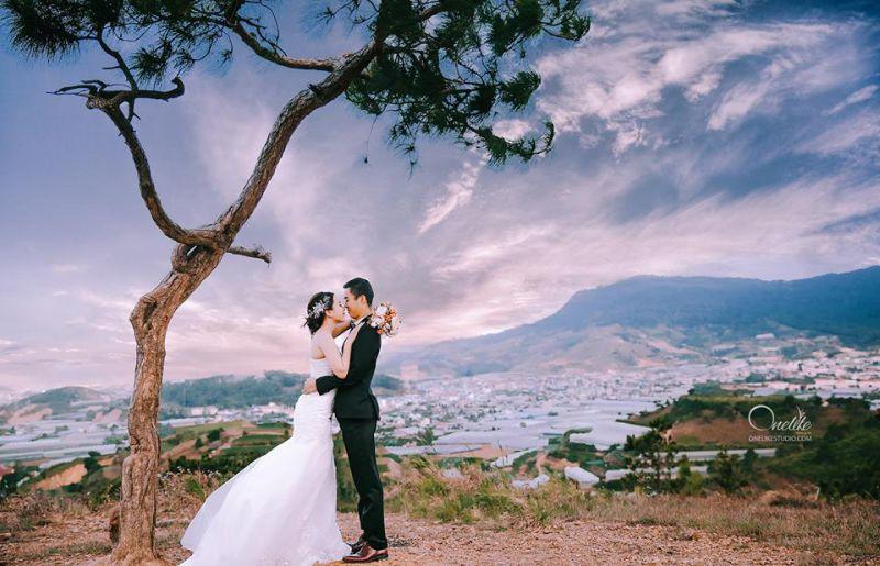 Ảnh cưới Onelike Studio Đà Lạt