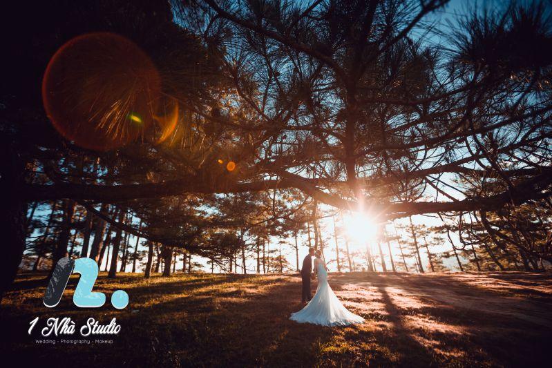 Studio 1 Nhà - Chụp ảnh cưới tại đồi thông Đà Lạt