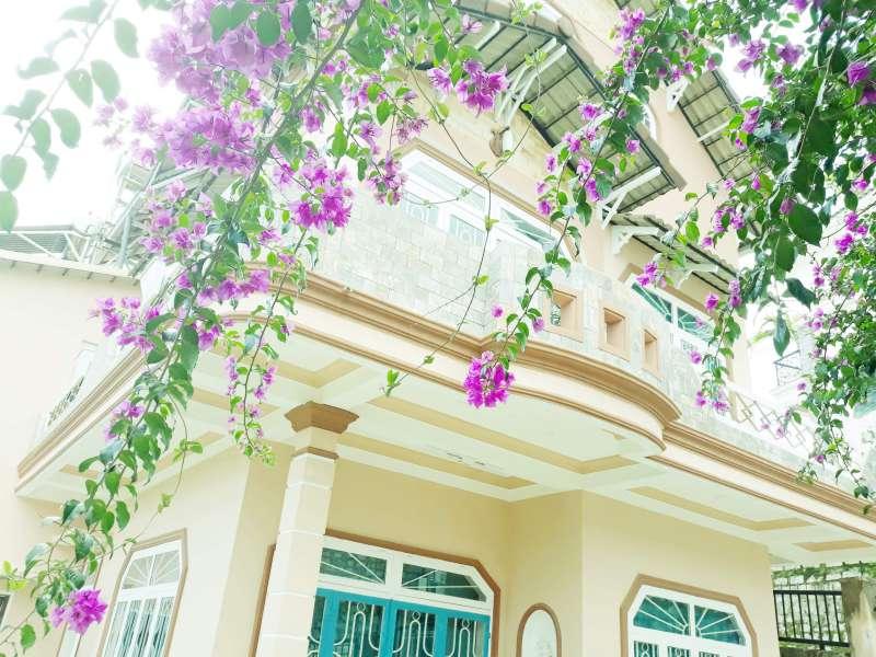 Lê Văn Tám là một trong những căn villa Đà Lạt có view đẹp