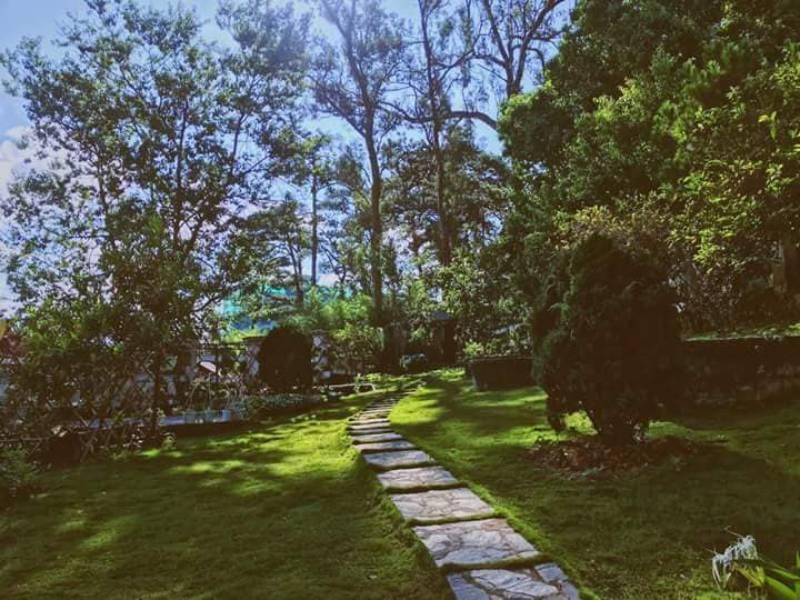 Không gian sân vườn khá rộng tại căn villa Pháp cổ Đà Lạt