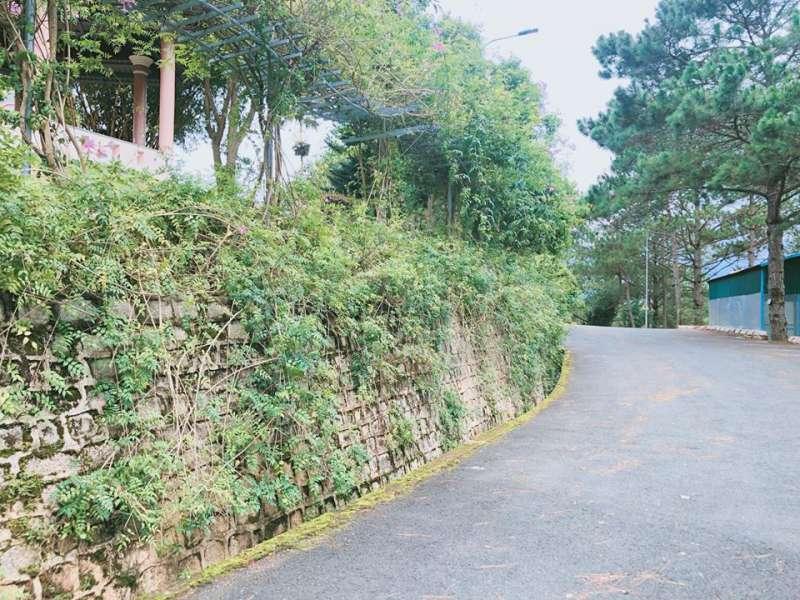 Hình ảnh khu nghỉ dưỡng Minh Tâm ở Đà Lạt