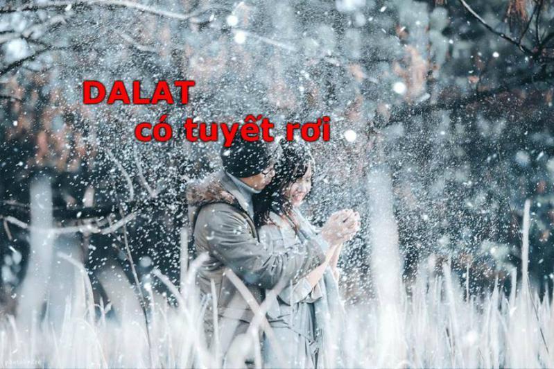Lừa đảo ở Đà Lạt có tuyết rơi