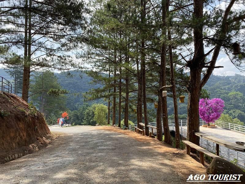 Đường đi Hoa Sơn Điền Trang