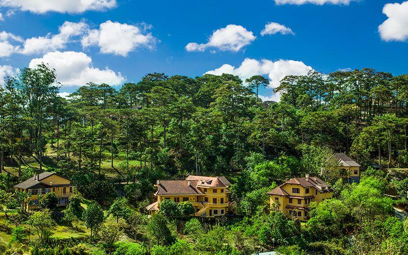 Resort Ana Mandara Đà Lạt nằm giữa một đồi thông