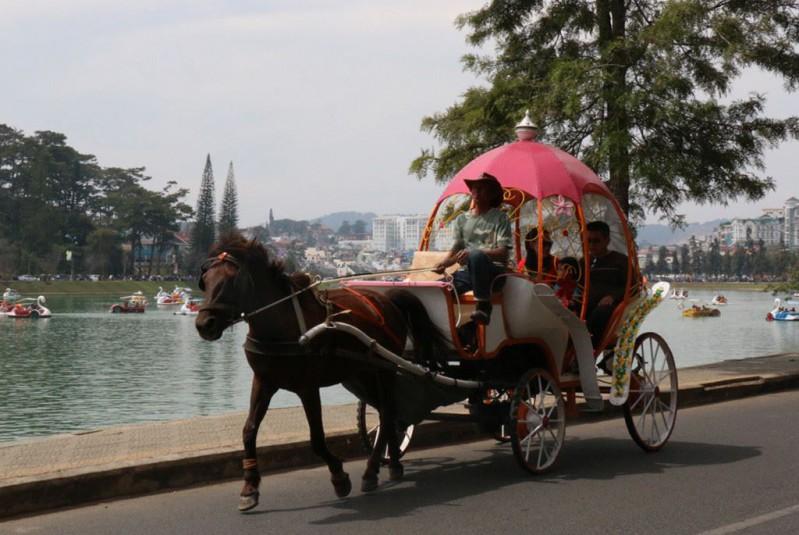 Xe ngựa tham quan hồ Xuân Hương