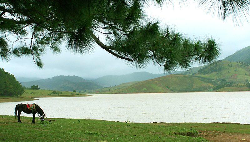 khu du lịch hồ suối vàng