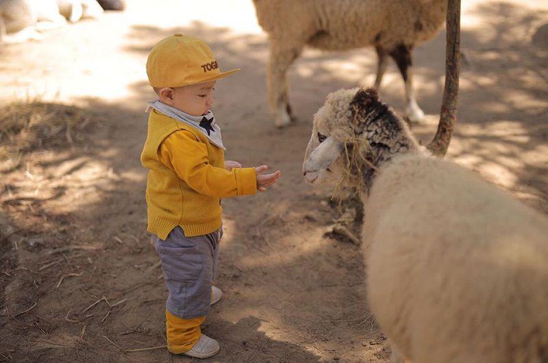 vườn thú Zoodoo Đà Lạt
