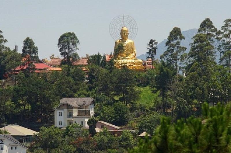 hình ảnh bức tượng phật màu vàng và những mái ngói đỏ củ thiền viện Vạn Hạnh nỗi bạch giữa rừng thông
