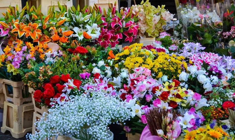những bông hoa với đủ sắc màu ở chợ đêm Đà Lạt