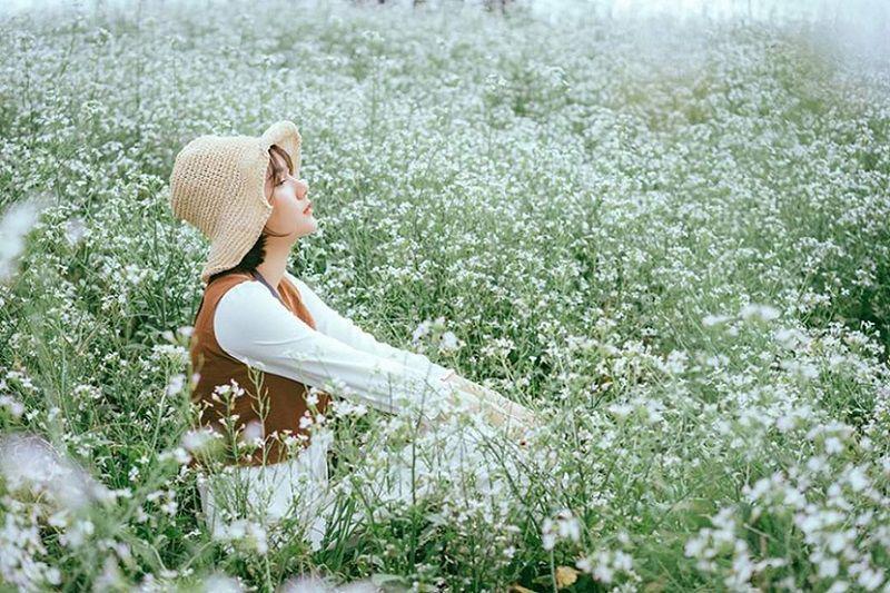 12 mùa hoa Đà Lạt đẹp nhất