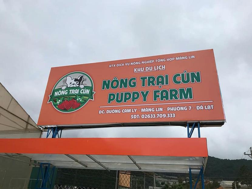 Puppy Farm nông trại cún Đà Lạt