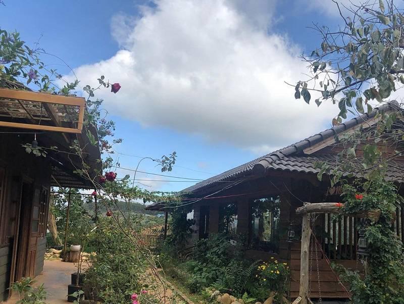Không gian những ngôi nhà bằng gỗ ở Mộc Trà Farm