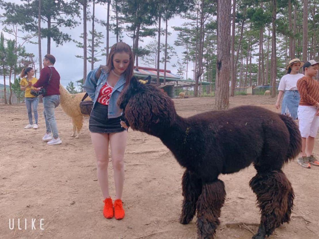 Tour vườn thú Zoodoo Đà Lạt 1 ngày