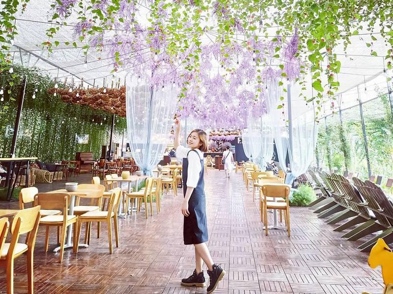 F cánh đồng hoa cafe Đà Lạt