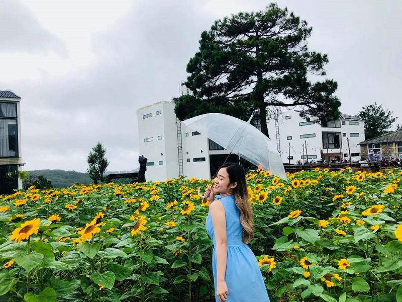 Khung cảnh vườn hoa ở khuôn viên The Kupid homestay Đà Lạt