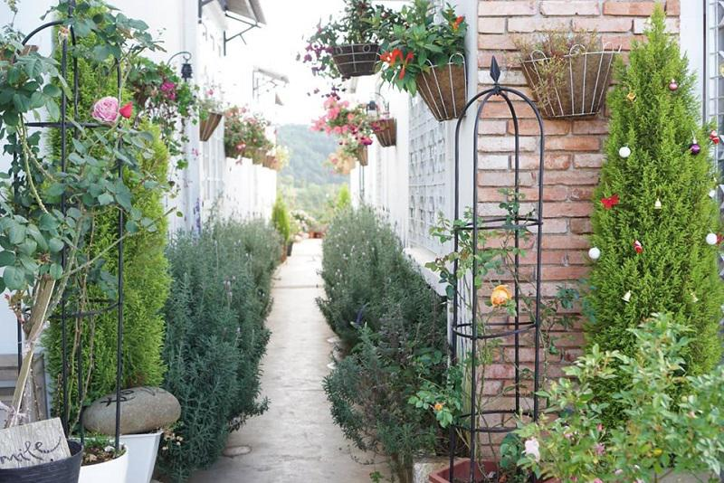Không gian vườn ở LengKeng homestay Đà Lạt