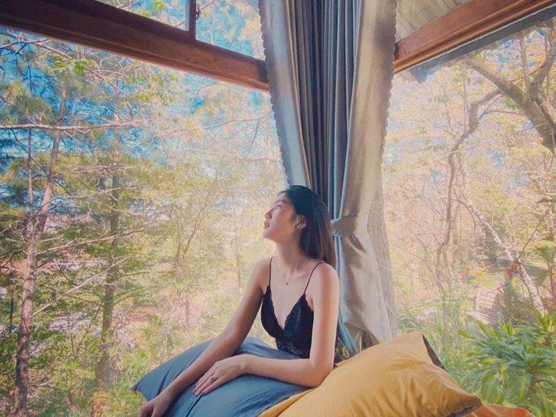View rừng thông ở homestay