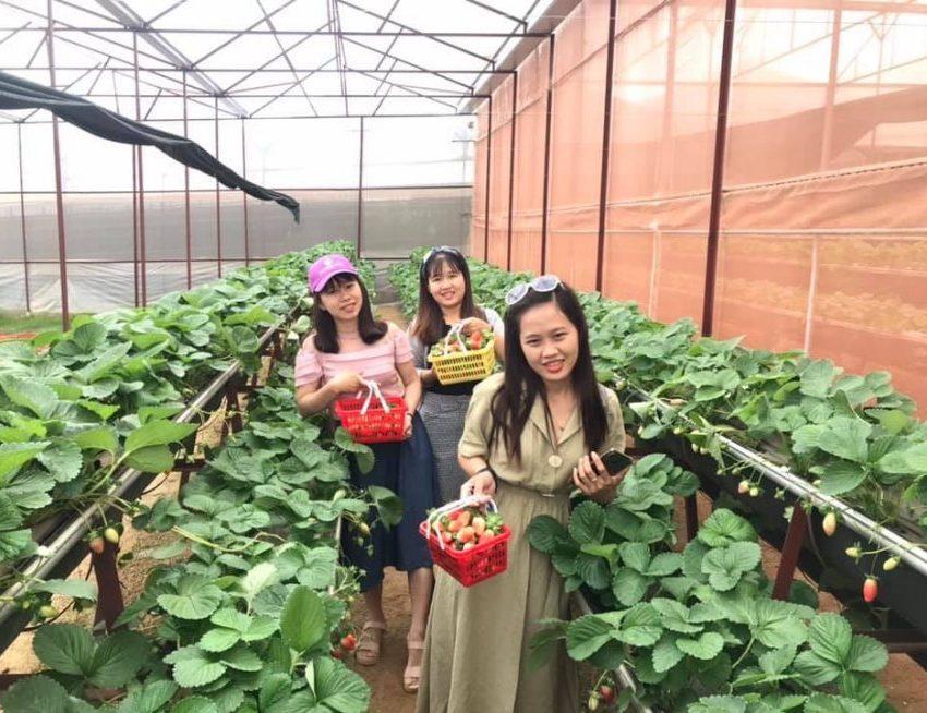 Tour Biên Hòa đi Đà Lạt