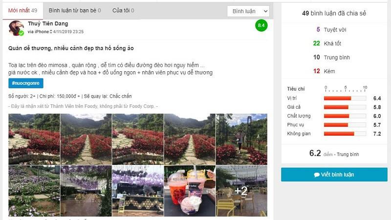 đánh giá F cánh đồng hoa cafe Đà Lạt