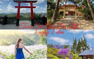 Tour du lịch Sài Gòn Đà Lạt 3 ngày 2 đêm