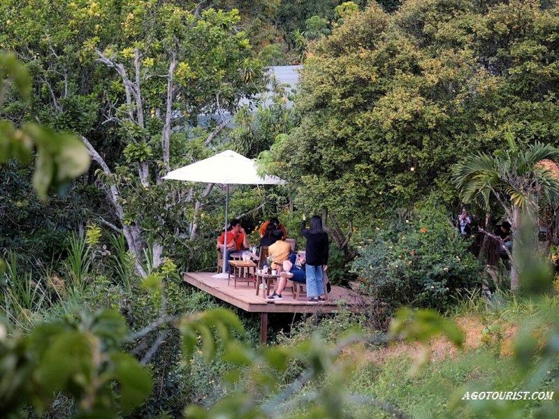 Homestay núi đồi, rừng thông view săn mây ở Đà Lạt