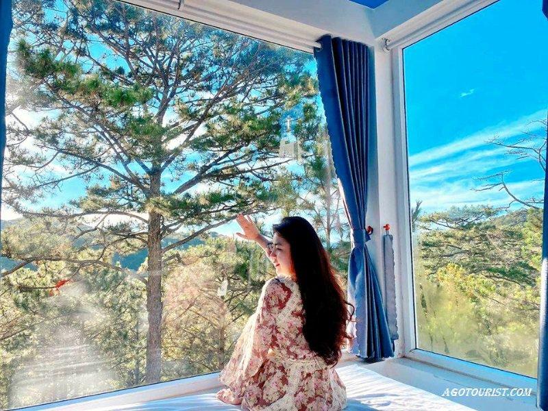 Homestay oppa có view rừng thông Đà Lạ